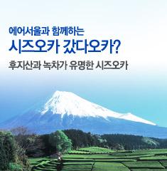 시즈오카 갔다오카?