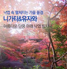 가을 향기 짙은 니가타